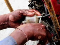 Hands (Savvas511) Tags: hands men mens oily skin working people work close ups travel natural life