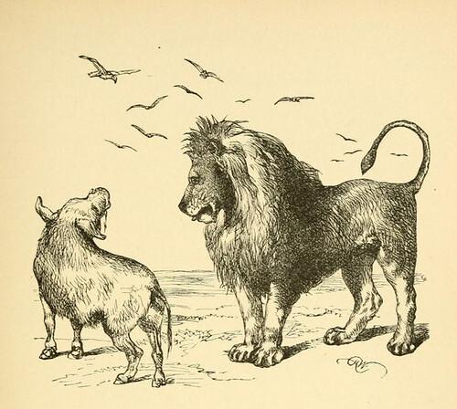 Leo, Aper, et Vultures