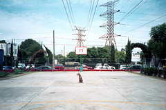 (oscar juarez) Tags: trees sky dog film lines court power basket towers xa olympusxa portra160nc mobformat11streetsurreal