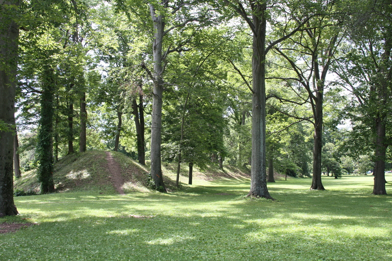 Mound in the Trees