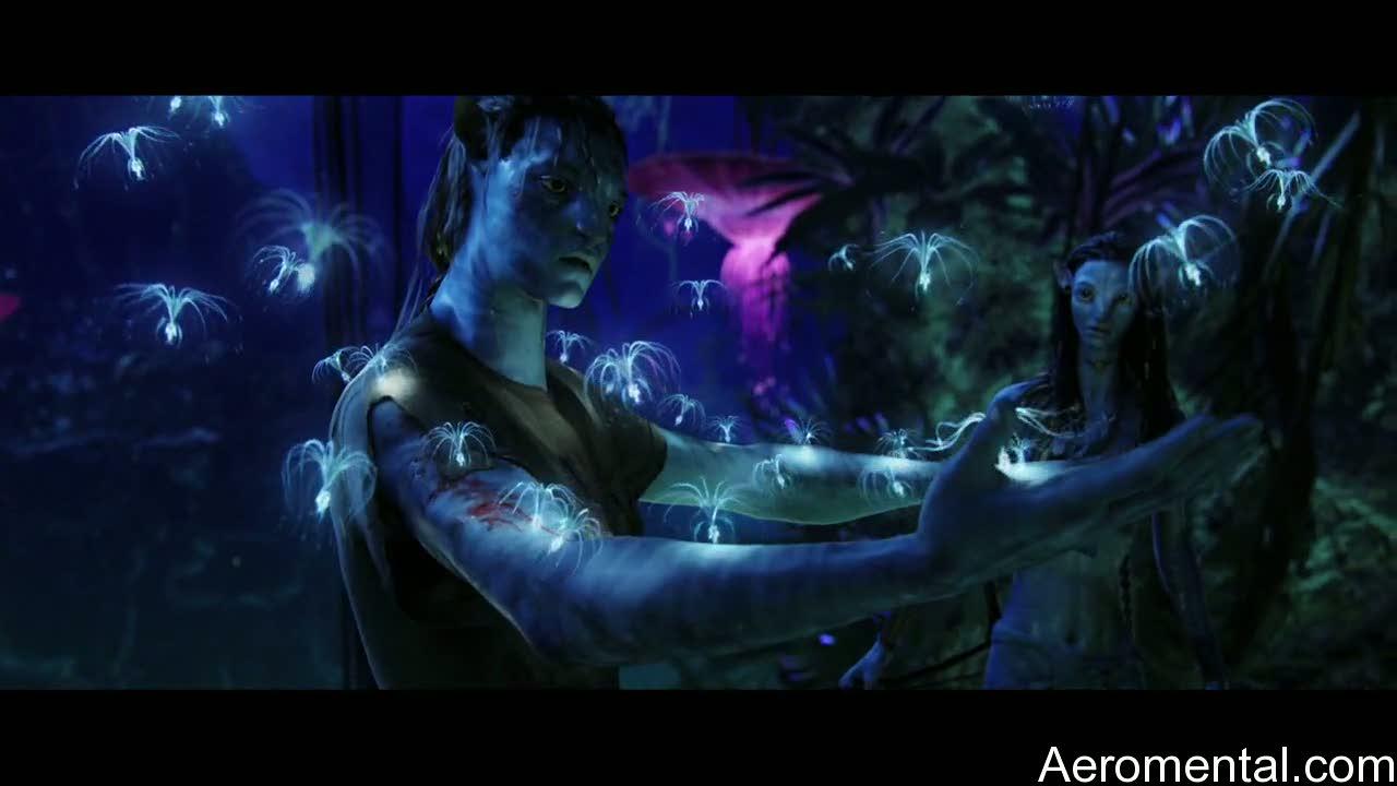 película Avatar semillas pandora