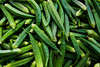 okra (ion-bogdan dumitrescu) Tags: food plant green singapore farmers market fresh okra bitzi summer09 abelmoschusesculentus hibiscusesculentus ibdp mg6553 findgetty ibdpro wwwibdpro ionbogdandumitrescuphotography