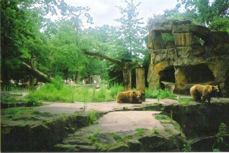 Björnar, Berlin Zoo