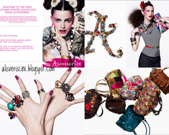 accessorize (4)