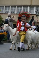 Dsalpe - Alpabzug (steffi's) Tags: boy children schweiz switzerland cattle suisse traditional landwirtschaft goat folklore kinder ziege svizzera traditionalcostume khe junge appenzell senn herdsmen brauchtum urnsch knabe trachten sennet geiss dsalpe alpabzug appenzellertrachten  appenzellerziegen senntum
