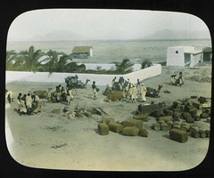 Preparing for start of the expedition (The Field Museum Library) Tags: africa expedition mammals somalia zoology berbera 1896 carlakeley specimencollection dgelliot woqooyigalbeed