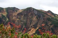 ホコ岩周辺