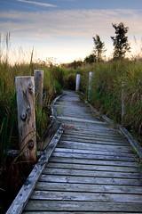 IMG_6644 (Glen Campbell) Tags: durham boardwalk portperry nonquon flickrchallengegroup flickrchallengewinner canon40d
