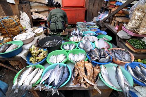 fish wet market jetis sidoarjo
