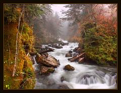 Otoo y niebla (Alberto Abizanda) Tags: france olympus otoo lacs 2009 pyrenees pyrnes pirineo ibon ayous zd1454mm lacdayous e620 albertoaf3