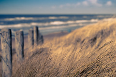 Path to the Beach (Fabi Fliervoet) Tags: holland nature stock thenetherlands fabifliervoet