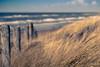 Path to the Beach (Fabi Fliervoet) Tags: holland nature stock thenetherlands fabifliervoet