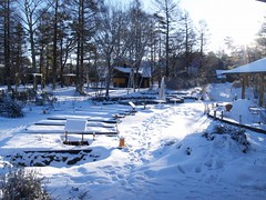山中湖の雪