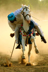 Bang (Amir Mukhtar Mughal | www.amirmukhtar.com) Tags: pakistan light horse game sports sport canon running games event amir target aim dust punjab bang rider peg armour saddle gallop mughal mughals faisalabad tentpegging culturalsports amirmukhtar culturalgames tentpeger