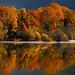 otoño leonés par carlos jm