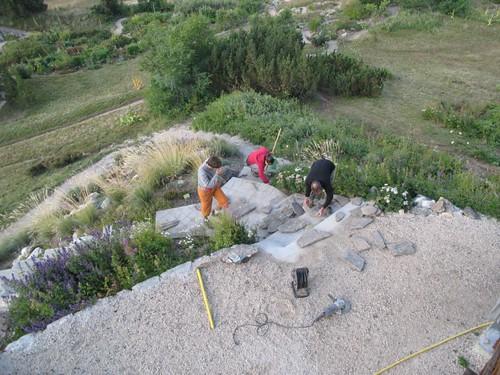 Flickriver: Photoset \'Escalier de la rocaille de Caryophyllaceae\' by ...