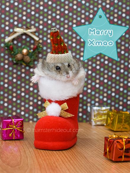 Have a Mario Christmas