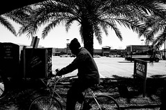 R0013850 (HI-MATIC AF) Tags: trees man tree guy bike bicycle palms parkinglot parking palm dude palmtrees palmtree donation boxes gr sigur ricoh ricohgr stripmall minimall donationbox