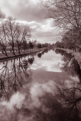 River of Glass (Anthony P26) Tags: category eskisehir kanlikavakpark landscape places travel turkey landscapephotography travelphotography park citypark trees winter sky clouds cloudysky river riverbank reflections reflection monochrome blackandwhite whiteandblack bw turkiye canon1585mm canon70d canon outdoor