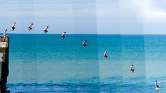 Jumping (AndyWilson) Tags: summer beach composite jump jumping sony hastings alpha leap harbourwall a700 18250 tombstoning chbs09 chpb09 awch09 ajwch chpb09a