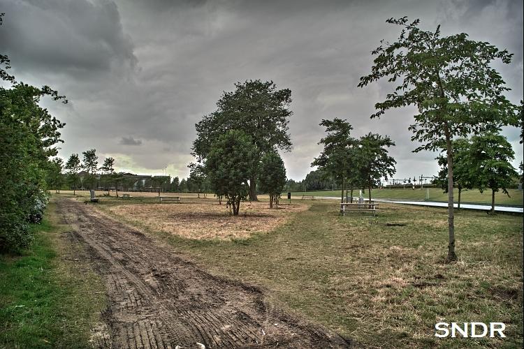 t Westerpark ziet er na de concerten een beetje afgeleefd uit.