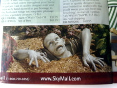 True actual pages from SkyMall.com