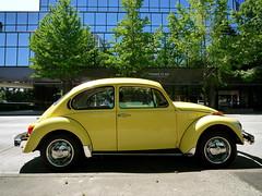 super yellow (kurt schlosser) Tags: leica vw beatle bellevue