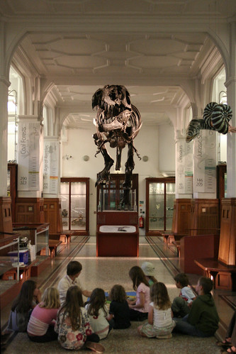 FFFF - Night At Manchester Museum 0641