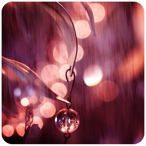 Bright Lights, Warm Rain