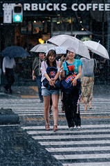 Aoyama Gakuin Schoolgirls brave the rainstorm: Route 246, Shibuya, Tokyo (Alfie | Japanorama) Tags: road street ladies girls storm girl rain japan umbrella photography tokyo nikon women crossing shibuya young raindrops rainstorm schoolgirl raining schoolgirls downpour zebracrossing d300 peopleintherain torrential aoyamagakuin caughtintherain photosfromtokyo peopleintokyo nikkor85mmf14afd streetphotographyintokyo streetphotographyinjapan