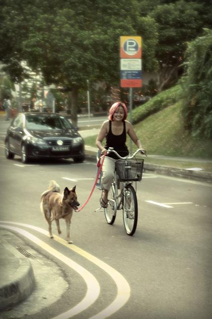 riding with koda
