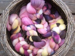 Southern Bloom on Australian Merino Roving