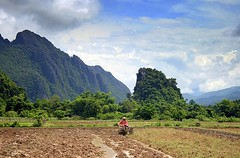 Lao Farming (Scott Foy) Tags: mountains canon asia seasia southeastasia searchthebest farming fields farmer laos vangvieng indochina karsts 400d scottfoy