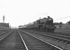 45230 near Leighton Buzzard with the 1045 Hastings to Walsall 28 July 1962 (pondhopper1) Tags: blackandwhite white black steam railways lms 460 black5 uksteam