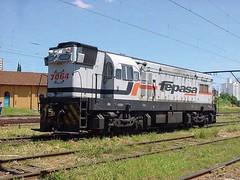 FPM88 Locomotiva Fepasa 7064 (Fernando Picarelli Martins) Tags: generalmotors fepasa locomotiva ferrovias companhiapaulistadeestradasdeferro locomotivadieselelétrica ferroviapaulistasa gmg12