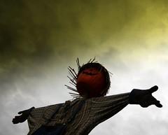 Jack (Many Muses) Tags: halloween scarecrow myfrontyard lindaplaistedcom