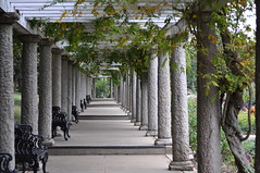 Italian Garden Walkway (emeraldspiryt) Tags: wedding garden bench vine walkway column maymontpark italiangarden worldworx terencetrophy winksplace