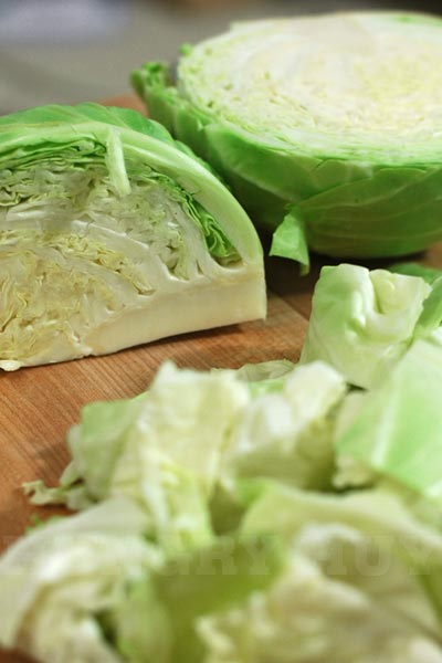 hungry-huy-cabbage