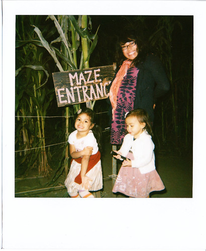 polaroid at the corn field