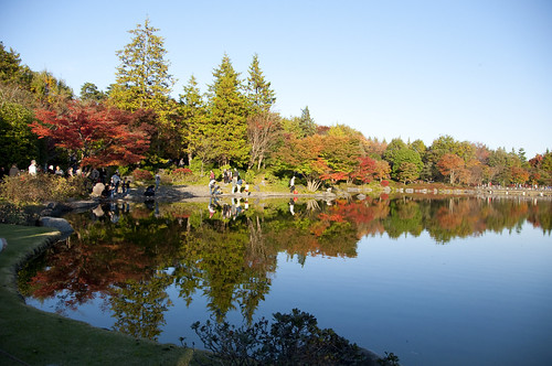 WordBench 写真部 - 第一回昭和記念公園