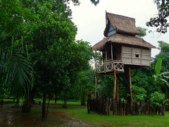 Unique tree-house at Pa Suam waterfall (Bn) Tags: laos bolavenplateau pasuamwaterfall lavevillage uniquehomestay typeofbungalow uniquetreehouse