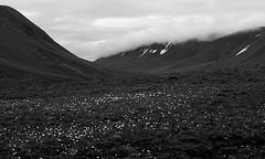 Bjrndalen III (Wen Nag (aliasgrace)) Tags: blackandwhite bw 15fav norway clouds landscape svalbard arctic spitsbergen bjrndalen