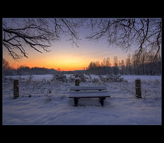 Have A Seat (@fotovi) Tags: winter snow tree field sunrise fence landscape seat brook hdr goldenhour broek boortmeerbeek ivoverbruggen2009 ronsdonk
