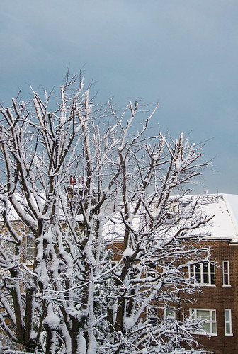 snowat849am