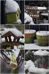 My Garden in Powder Sugar :-) (Elisabeth de Ru) Tags: fdsflickrtoys mosaic mygarden letitsnow vogelhuisjes twittered celisabeth85flickr sonydslra300 elisabethderu