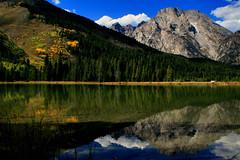 Mirror Mind (light aperture) Tags: lake mountains reflection fall colors fallcolors wyoming grandtetons tetons grandtetonnationalpark mtmoran stringlake leelake