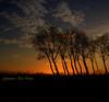 Damme (genevieve van doren) Tags: trees sunset sky textures ciel arbres hdr coucherdesoleil —obramaestra—
