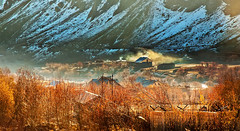Drass Valley - Cold and Beautiful (Anoop Negi) Tags: autumn pakistan vijay portrait india cold photography for photo highway media war place image photos earth delhi indian bangalore creative battle images best po terror conflict late kashmir mumbai operation anoop jammu negi coldest kargil inhabited drass photosof ezee123 dras bestphotographer imagesof anoopnegi jjournalism muskoh