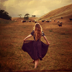 the work of early mornings (brookeshaden) Tags: morning selfportrait mountains girl beautiful field golden cows stormy running pasture lovely agriculture bovine grazing herding brookeshaden texturebylesbrumes