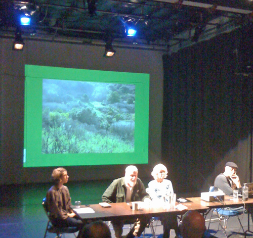 panel-on-'ecology'.jpg